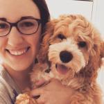 Mini Cockapoo Puppies For Sale Dallas Tx 75201