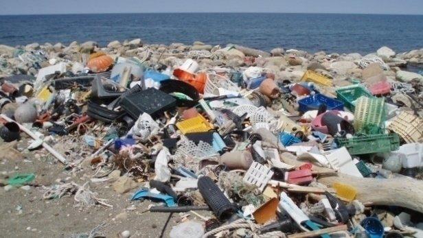 「海洋プラスチック汚染」の画像検索結果
