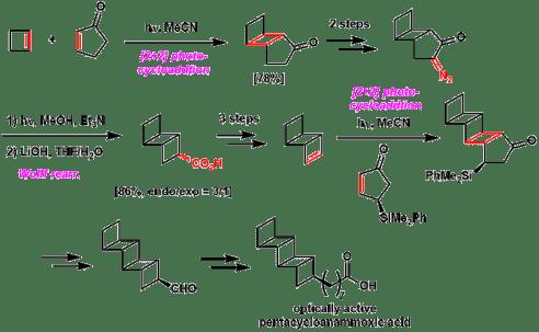 図4. ペンタシクロアナモキシ酸の不斉全合成[2b]