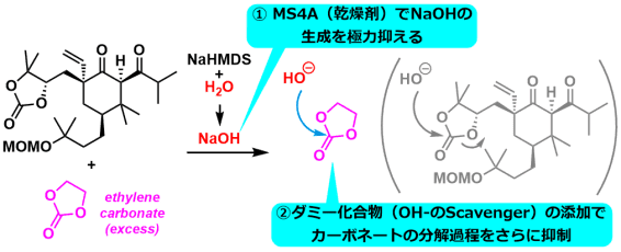 next_move_6a_3