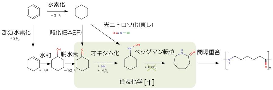 GREEN2013caprolactam02