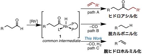 図2 Rh-アシル種を経由するこれまでの反応と今回の反応