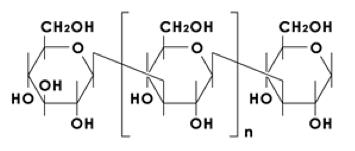 パラミロンの構造