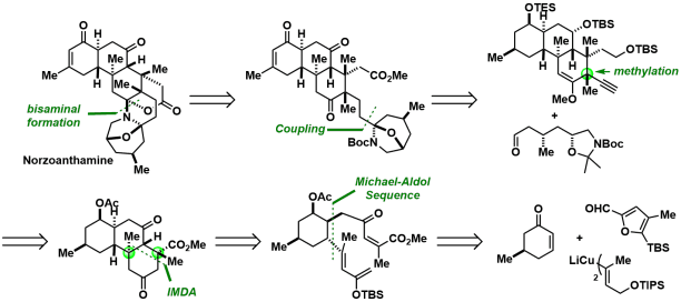 norzoanthamine_9