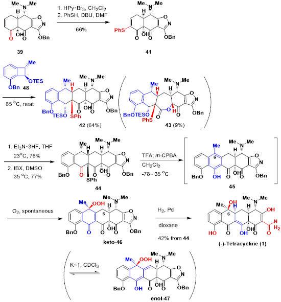 tetracycline_11