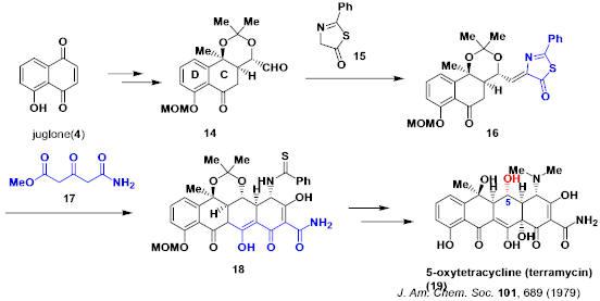 tetracycline_4