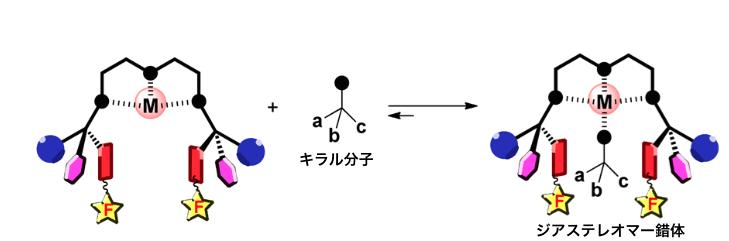 図2.本手法の概略図