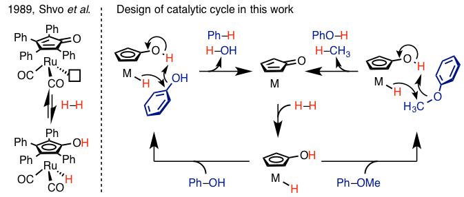 図2. Shvo触媒(左)と本反応の触媒サイクル設計 (右)