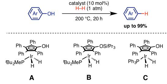 図3. アレノール誘導体の水素化分解反応