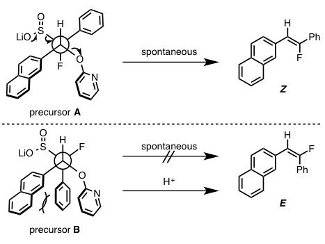 図5. 脱離反応時における中間体の立体配座の違い
