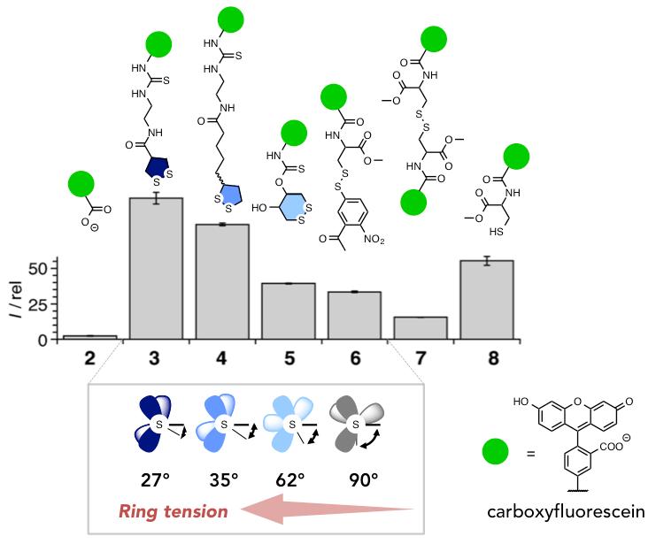 図3 Flow cytometry data showing the fluorescence of HeLa Kyoto cells after incubation of fluorophores 2-8.