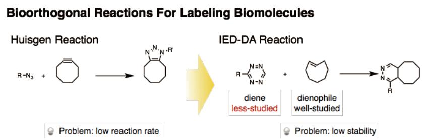 図1 Huisgen反応とIED-DA反応によるレポーター分子の導入