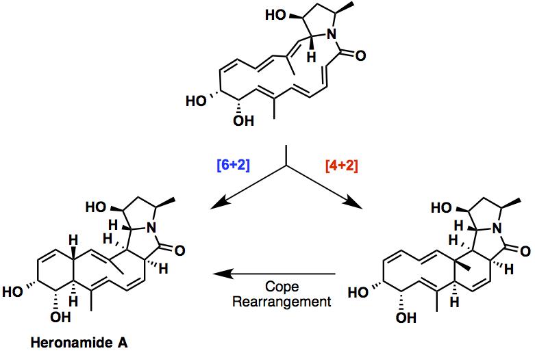heronamideA_scheme2