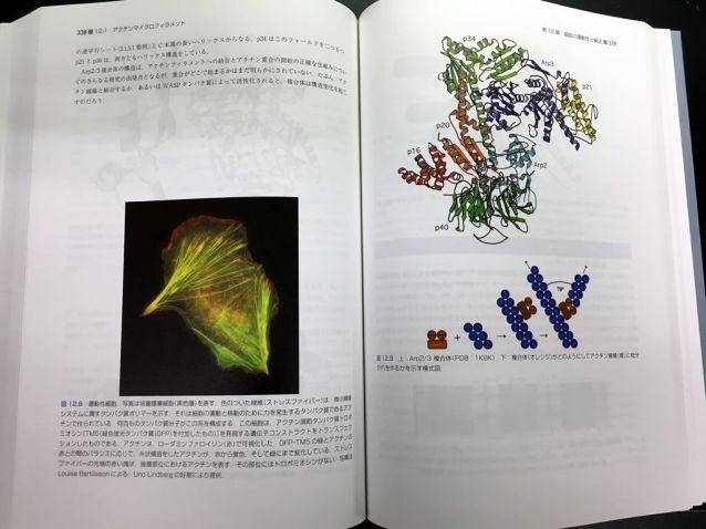 strucutural_biology_textbook_1