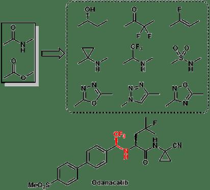 bioisostere_2