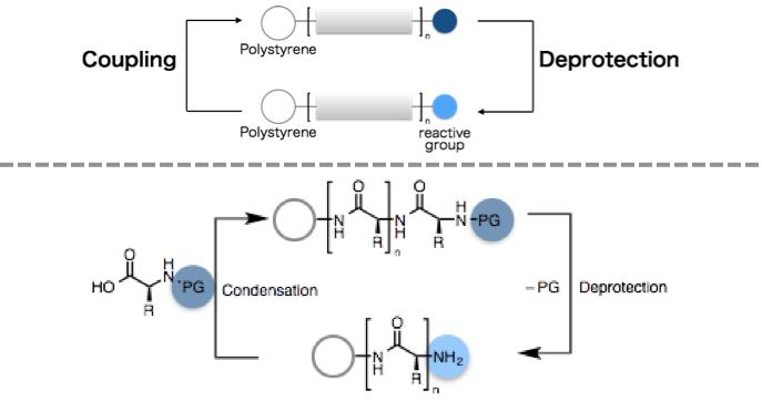 図1. 固相合成法の概念図(上)と具体例(下)