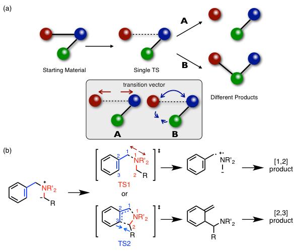 図3. (a)Dynamic matchingの概念図 (b)実際の反応