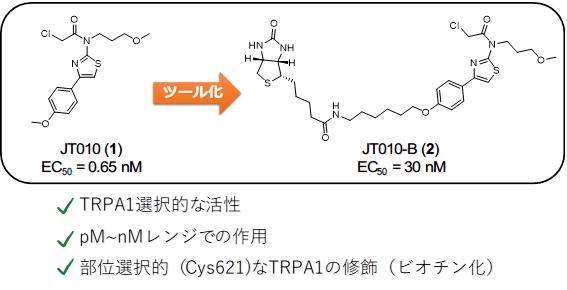 sr_J_Takaya_2