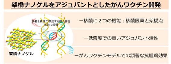 sr_N_Miyamoto_1