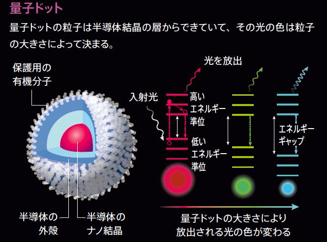 量子ドットの概念図(出典:Natureダイジェストより)
