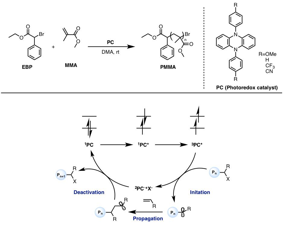 有機光触媒を用いたポリマー合成...