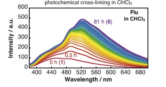 図2 前田さんが3日間ずっと測定し続けていた光架橋反応時の蛍光スペクトル変化。1が原料のらせん高分子、6が光架橋後の有機ナノチューブ。スペクトルの線がもはや綺麗なグラデーションになっている。