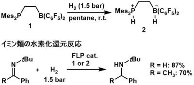Scheme 2. FLPと水素との反応およびイミン類の水素化還元反応