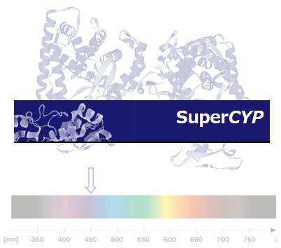 CYP_0