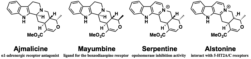 heteroyohimbine_activity