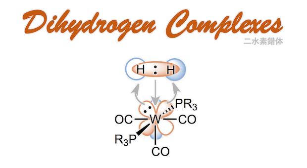二水素�e片能认出您来我叫鲁强�w Dihydrogen Complexes