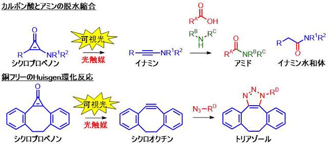 可視光応答性光触媒を用いる高反応性アルキンの生成 | Chem-Station ...