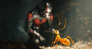 Ant-Man 2 : On sait quand le tournage débutera ! photo 1