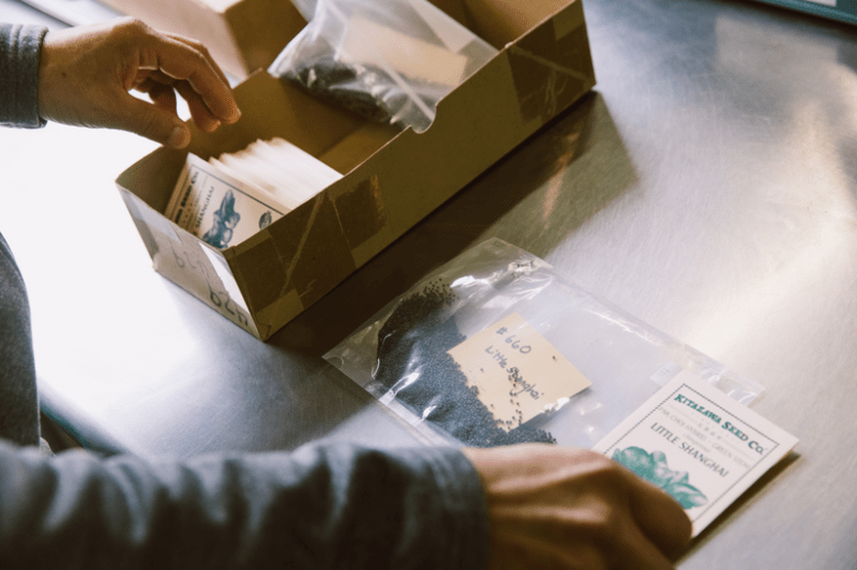 Kitazawa Seed Co. owner Jim Ryugo fills the company's signature manila seed packets with Little Shanghai baby pak choi seeds. Credit: Andria Lo