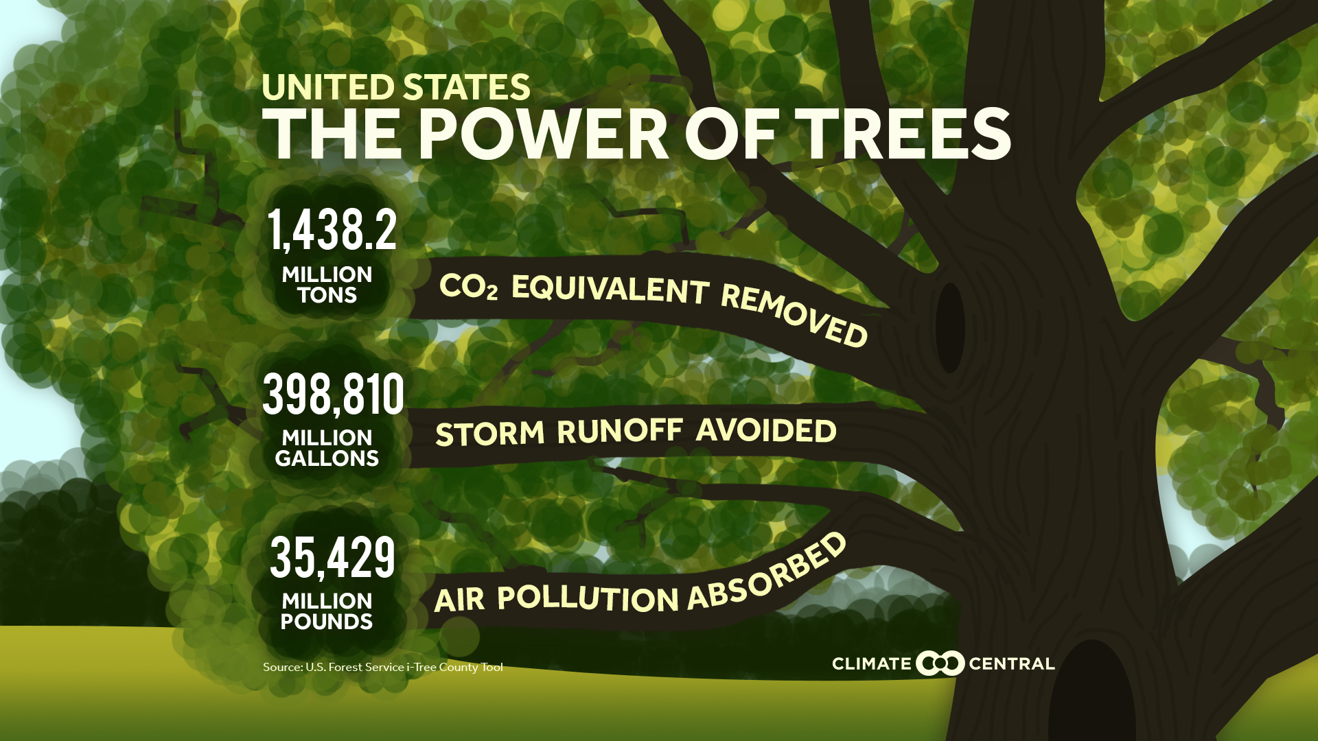 The Power Of Trees