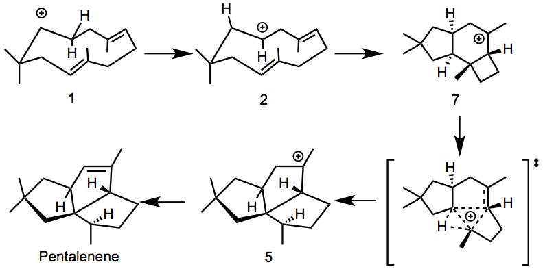 Pentalenene_conformation1