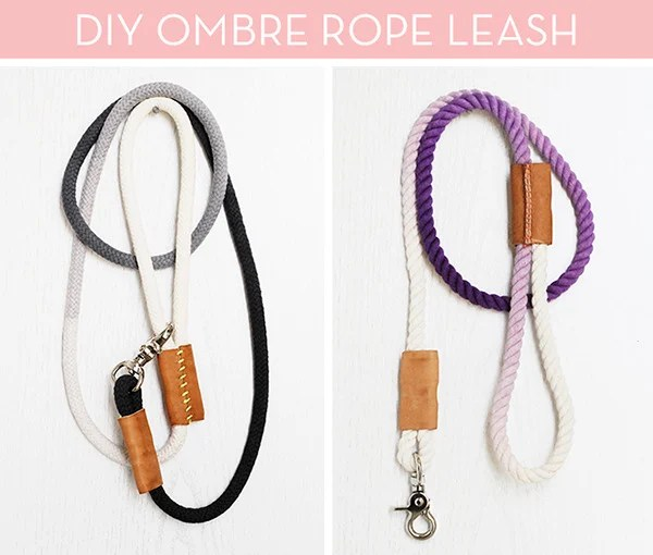 DIY - how to make a dog leash
