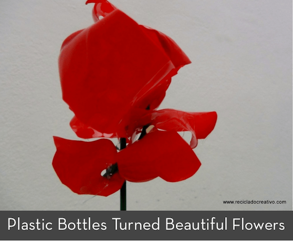 How To Recycle Plastic Bottles Into Beautiful Flowers