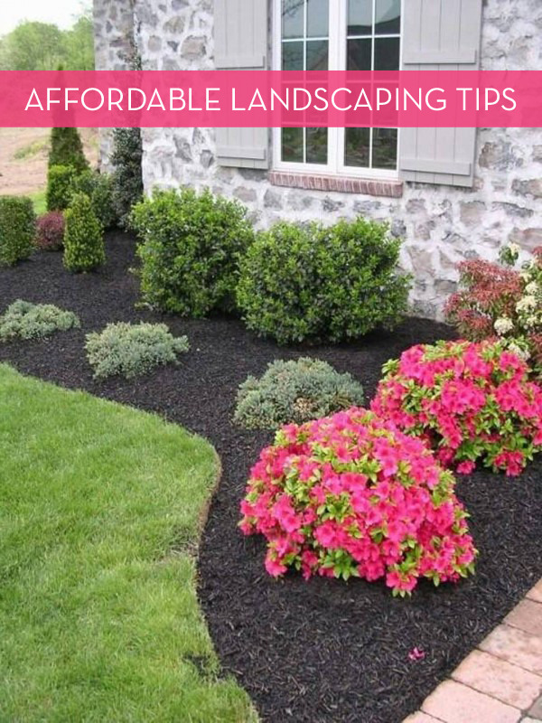 10 Tips For Landscaping On A Budget » Curbly | DIY Design ... on Garden Design Ideas On A Budget  id=98506