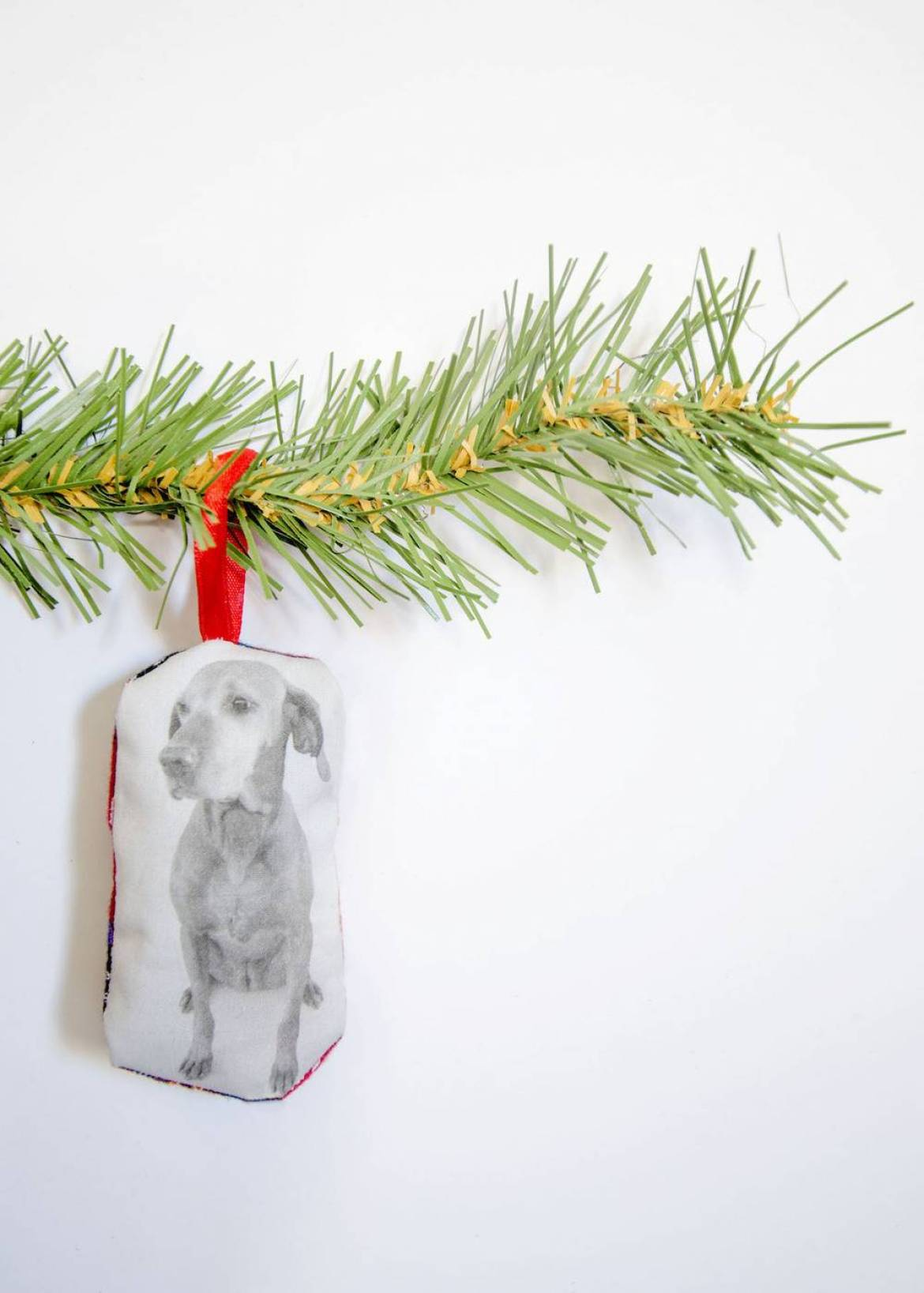 DIY Printed Pet Christmas Ornament