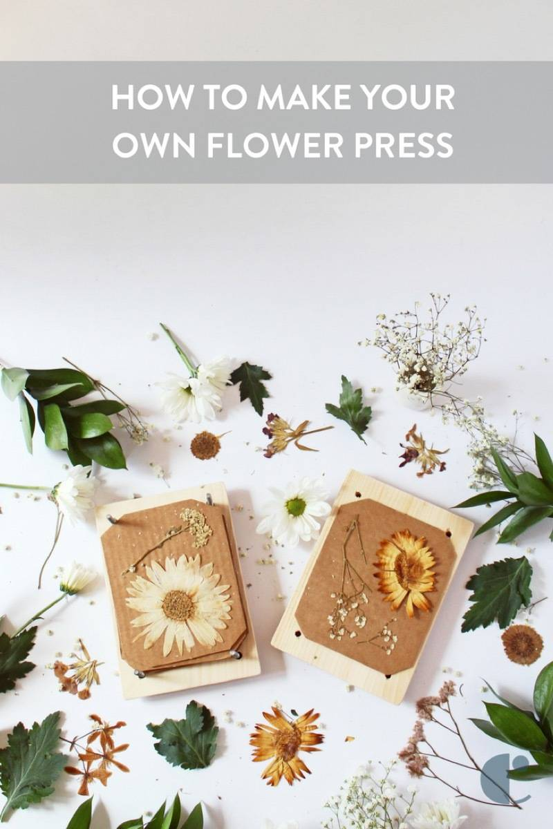 Use a handmade flower press to collect and keep blooms all year long