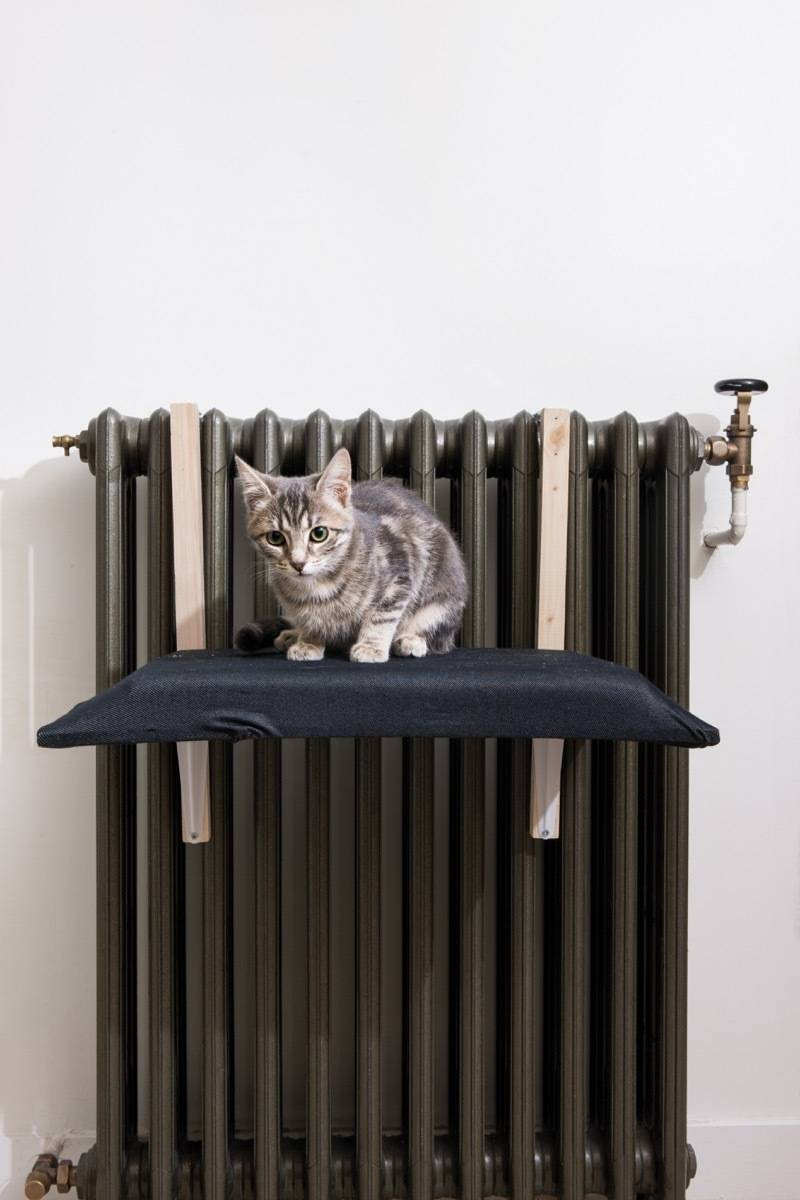 "A cat bed that fits over your radiator - from the new book, ""DIY Projects for Cats & Dogs"""