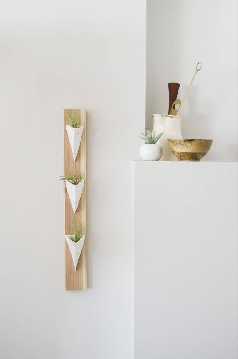 A clay and wood DIY air plant holder