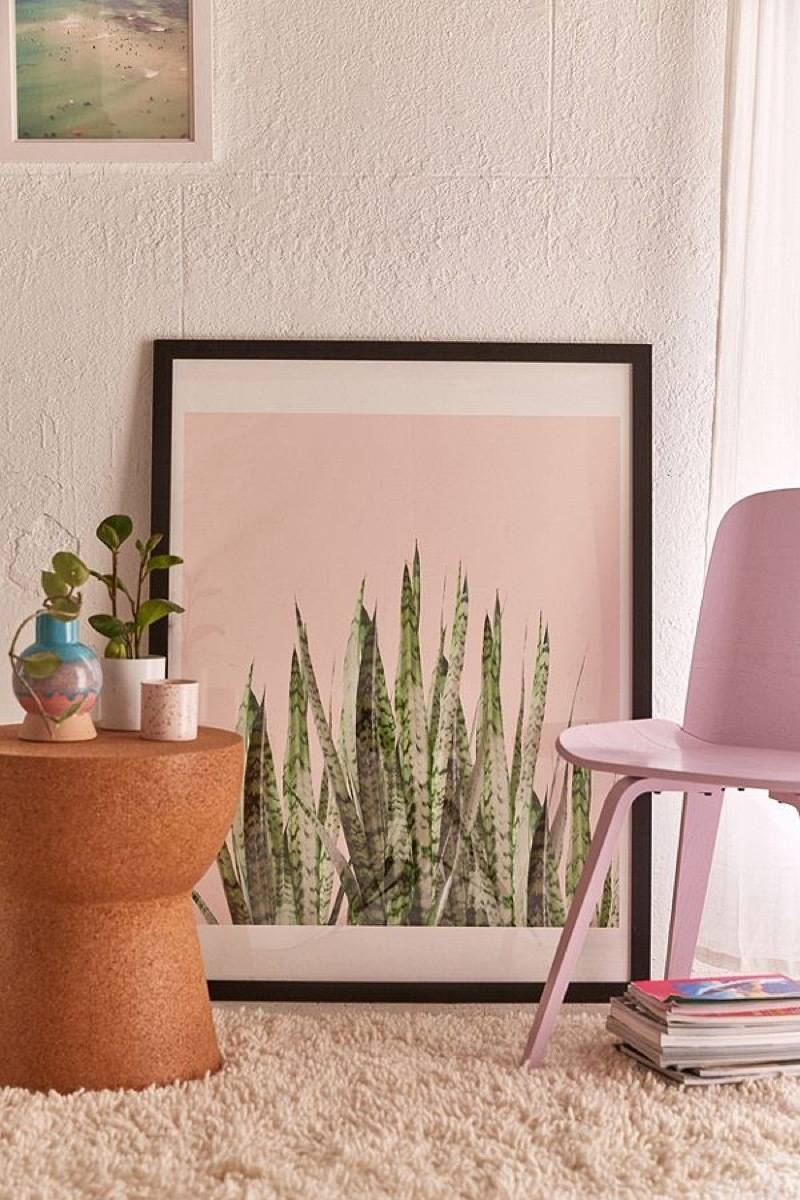 Snake plant wall art from Urban Outfitters