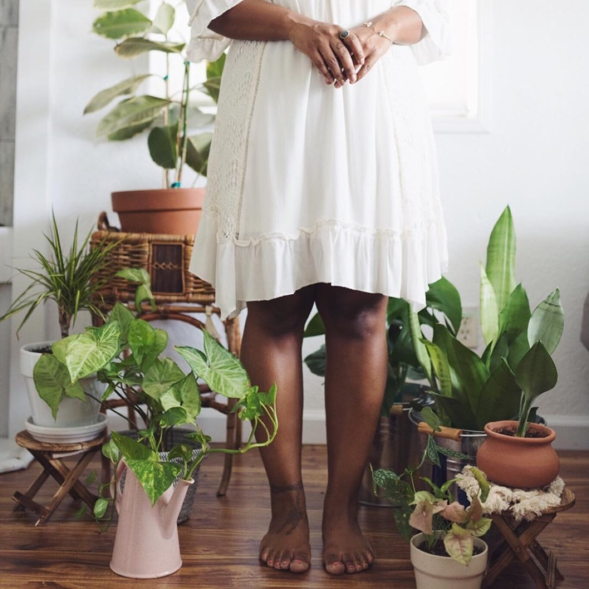 Plant ladies to start following on Instagram - D'Ana Joi