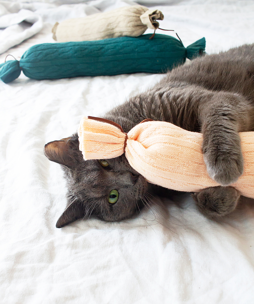 How to make easy DIY cat toys