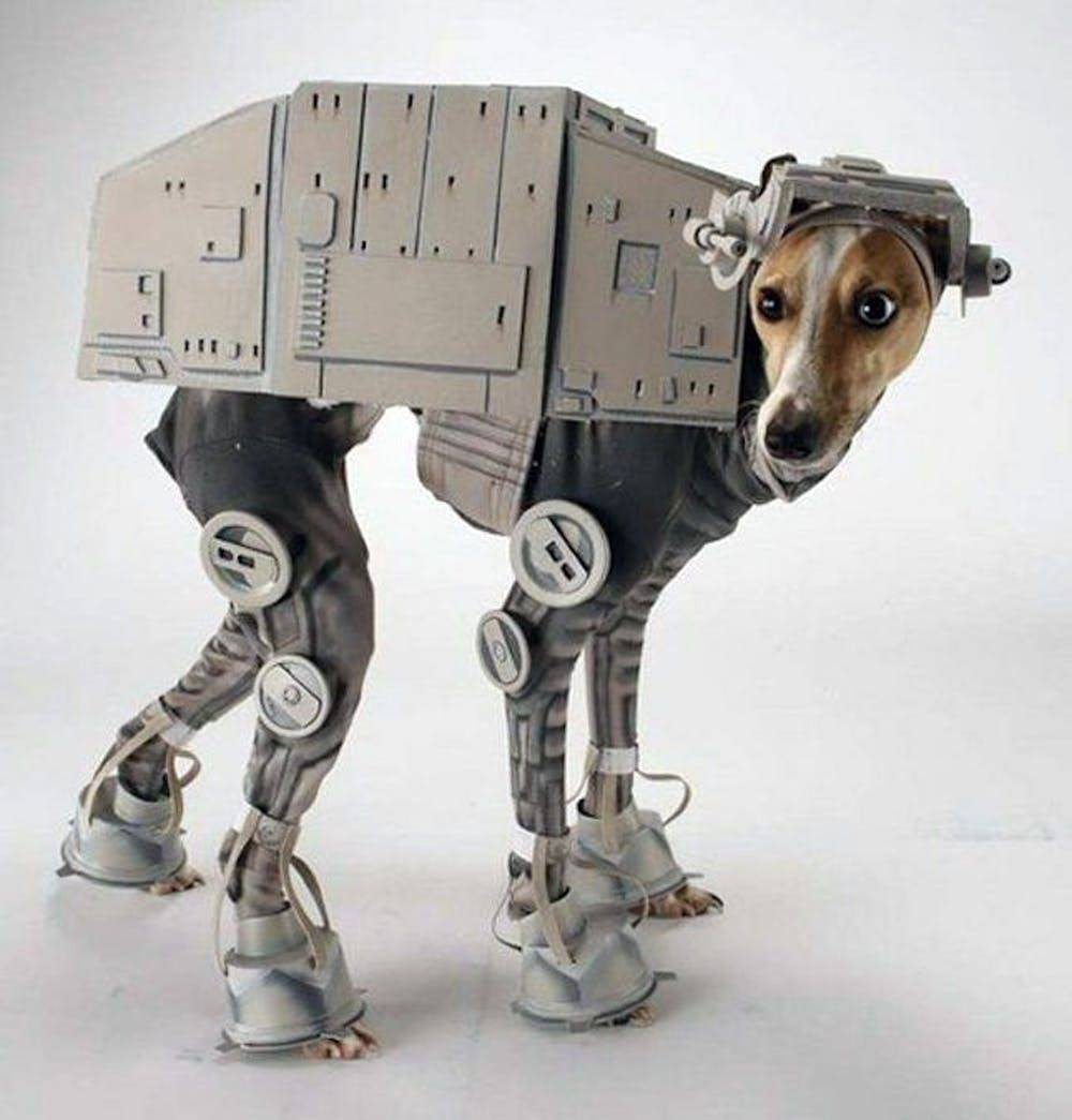 Star Wars pet Halloween costume