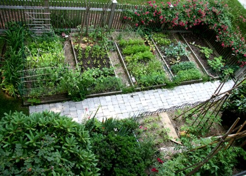 Vegetable Garden Layout - Photo Trend & Ideas
