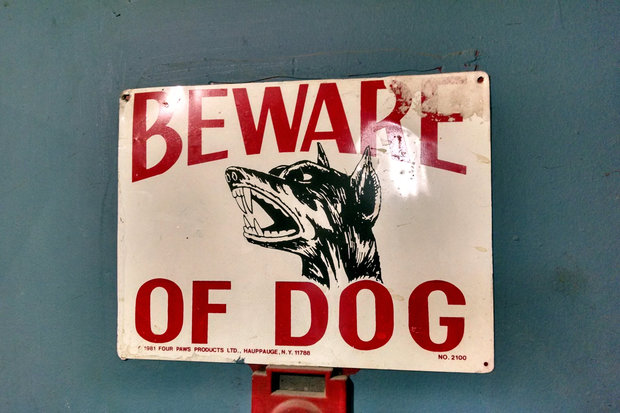 Beware of dogs sign