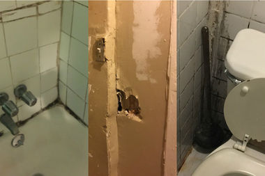 The bathroom has mold and a gaping hole in the ceiling. There are also holes in the wall.