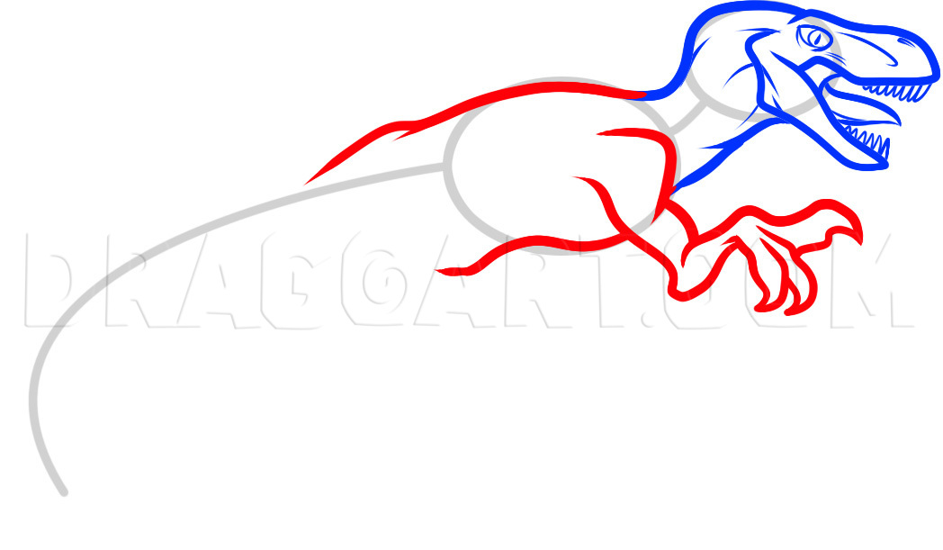 How To Draw A Velociraptor Dinosaur Step By Step Drawing Guide By Dawn Dragoart Com